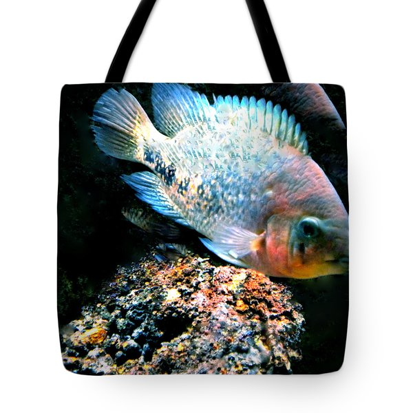 Fish living in Denmark Tote Bag by Colette V Hera  Guggenheim
