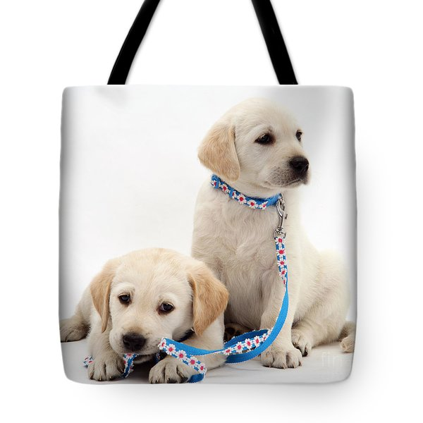 Goldidor Retriever Puppies Tote Bag by Jane Burton