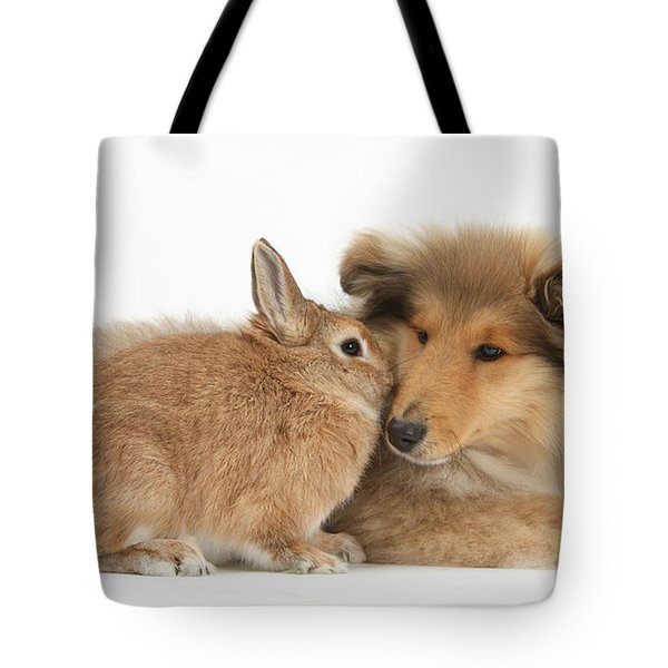 Rough Collie Pup With Rabbit Tote Bag by Mark Taylor