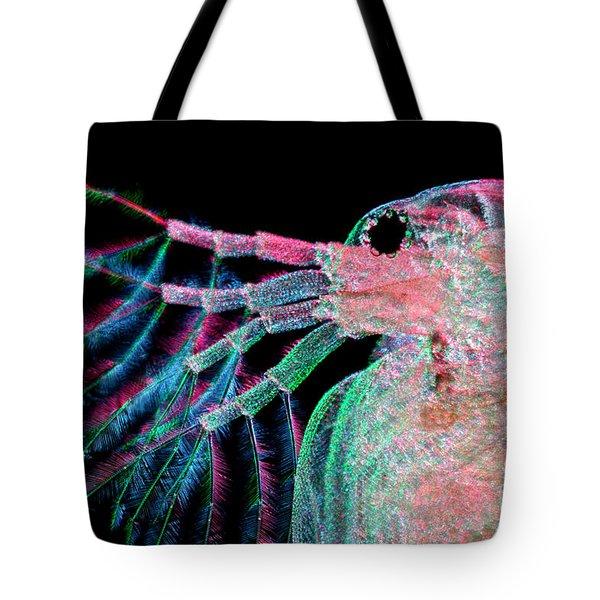 Water Flea Daphnia Magna Tote Bag by Ted Kinsman