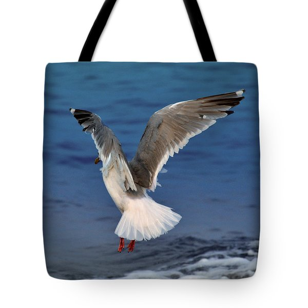 Seagull  Tote Bag by Debra  Miller