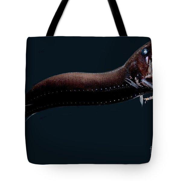 Deep-sea Dragonfish Tote Bag by Dant� Fenolio