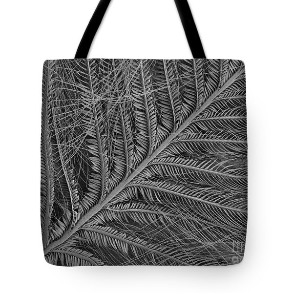 Sem Of Eastern Bluebird Feathers Tote Bag by Ted Kinsman
