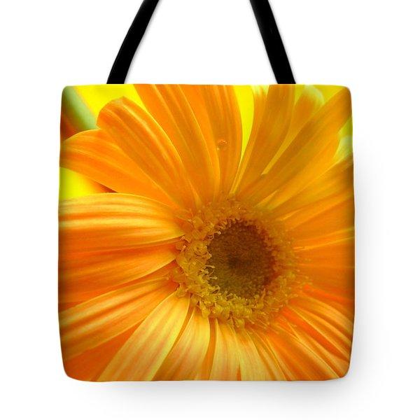 7321-007 Tote Bag by Kimberlie Gerner