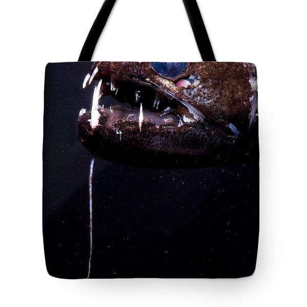 Dragonfish Tote Bag by Dante Fenolio