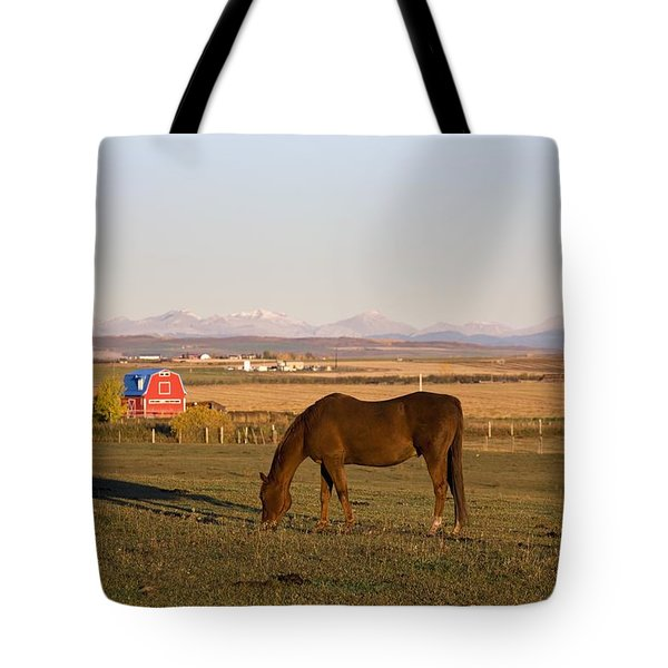 A Brown Horse Grazing In A Field In Tote Bag by Michael Interisano