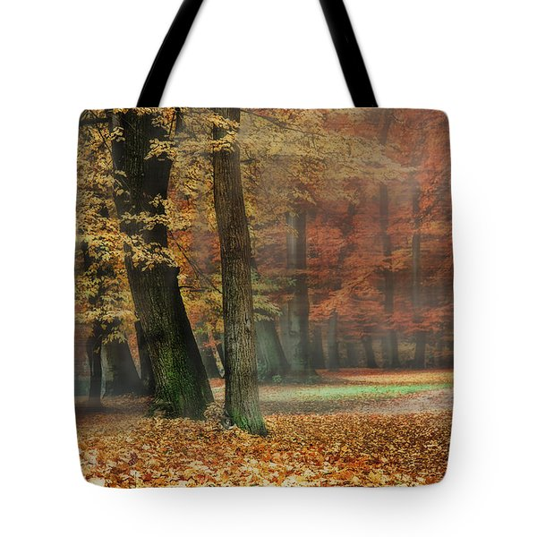 A Foggy Autumn Day Tote Bag by Hannes Cmarits