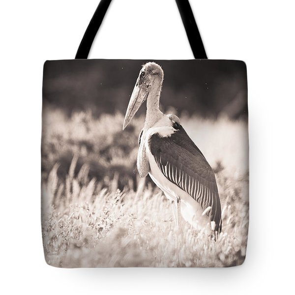 A Large Bird Stands In The Grass Tote Bag by David DuChemin