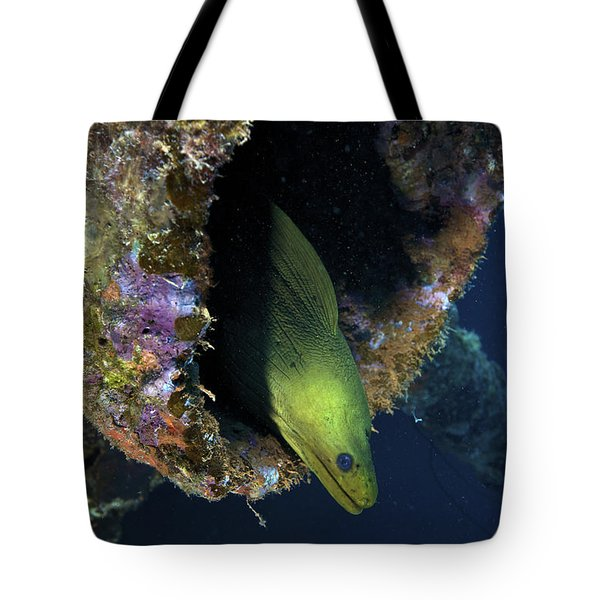 A Large Green Moray Eel Tote Bag by Terry Moore