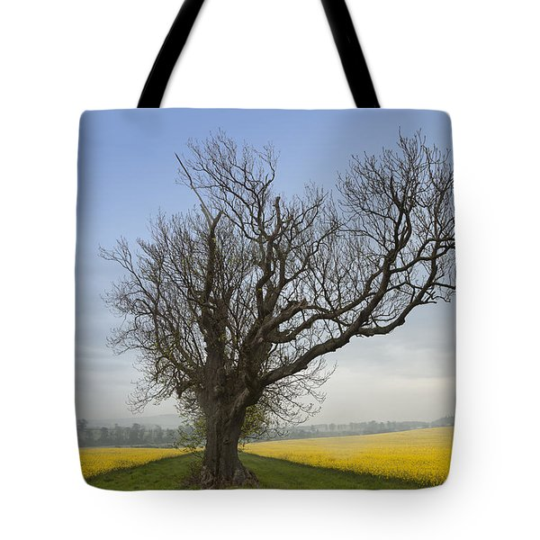 A Lone Tree On The Edge Of A Yellow Tote Bag by John Short