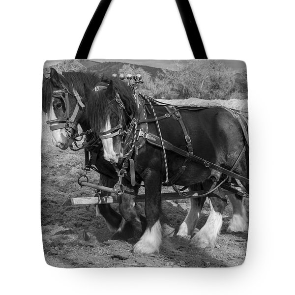 A Pair Of Shire Horses Tote Bag by Fran Riley