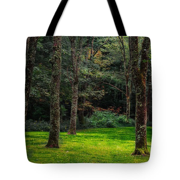 A Place To Unwind Tote Bag by Scott Hervieux