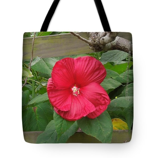 A Red Hibiscus Tote Bag by Chad and Stacey Hall