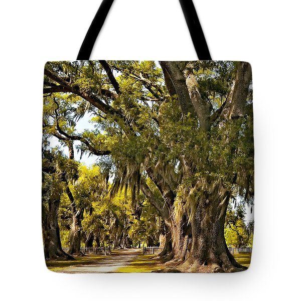 A Stroll Through Time Tote Bag by Steve Harrington