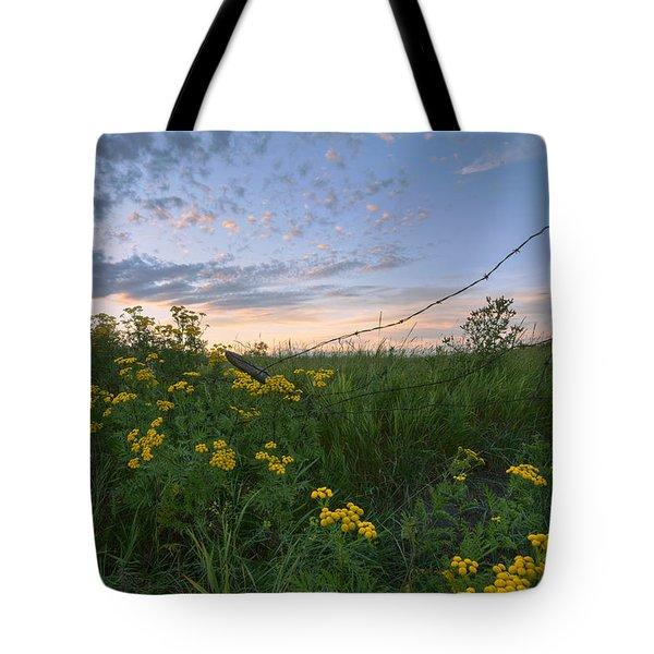 A Summer Evening Sky With Yellow Tansy Tote Bag by Dan Jurak