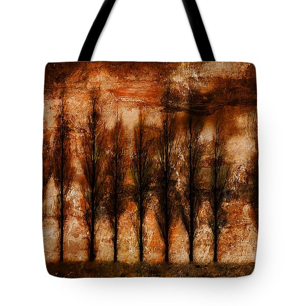 Absolution Tote Bag by Brett Pfister