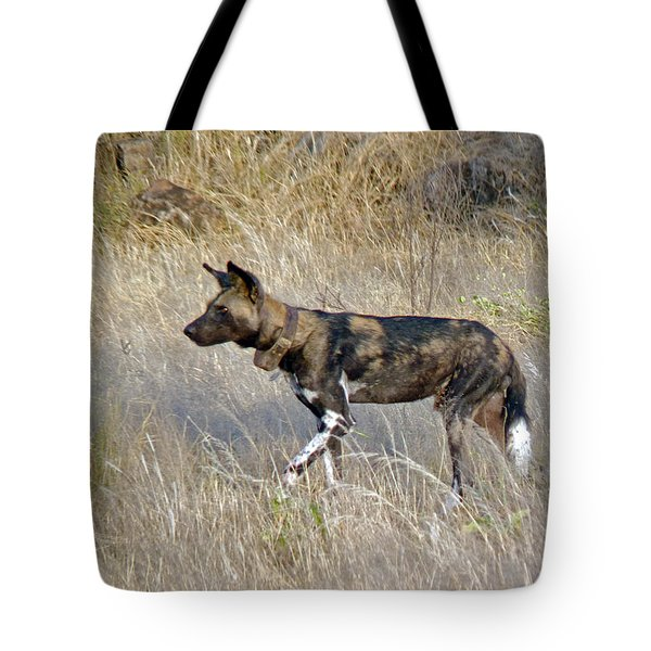 African Wild Dog Tote Bag by Tony Murtagh