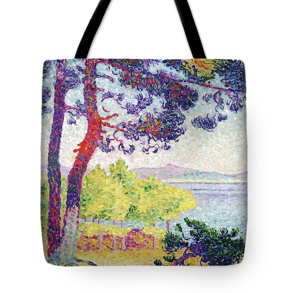 Afternoon At Pardigon Tote Bag by Henri-Edmond Cross