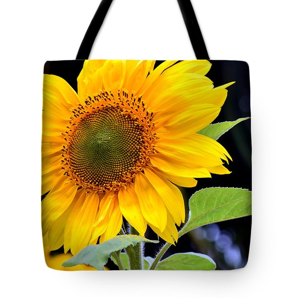 Against The Shadows Tote Bag by Fraida Gutovich