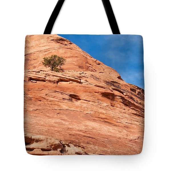 All Alone Tote Bag by Bob and Nancy Kendrick