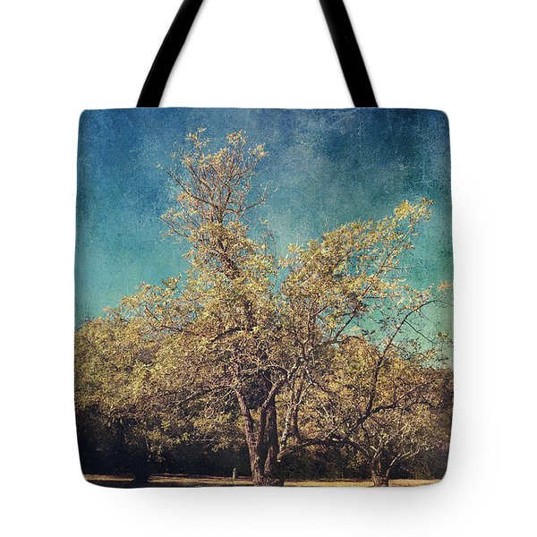 All That's Unknown Tote Bag by Laurie Search