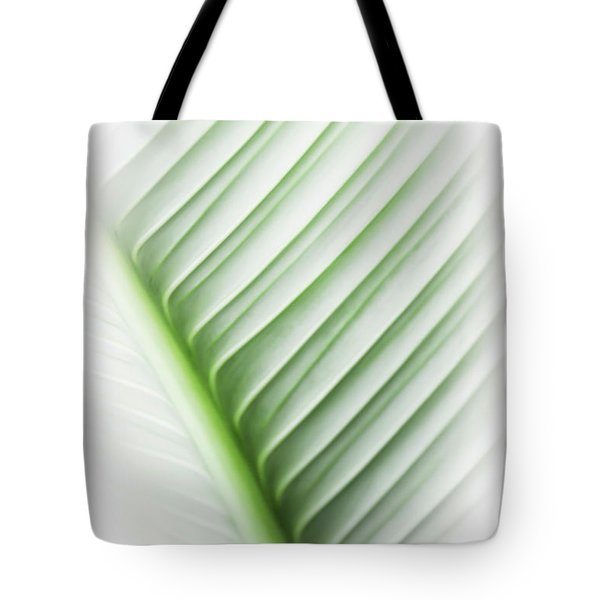 Almost Tote Bag by Carolyn Marshall