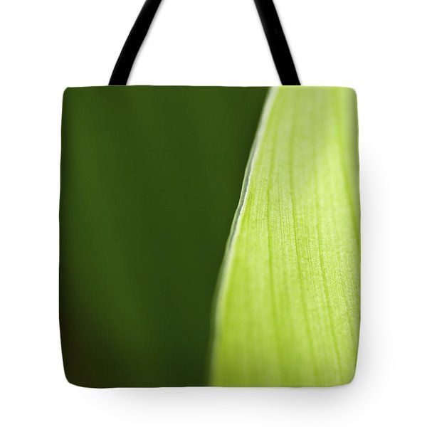 Along the Edge Tote Bag by Rich Franco