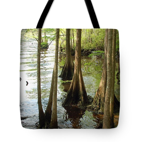 Along The Waccamaw - Cypress Swamp Tote Bag by Suzanne Gaff