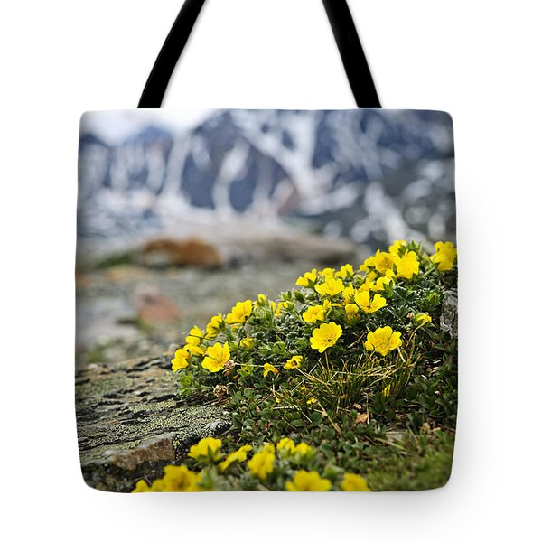 Alpine Meadow  Tote Bag by Elena Elisseeva