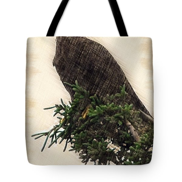American Bald Eagle in tree Tote Bag by Dan Friend