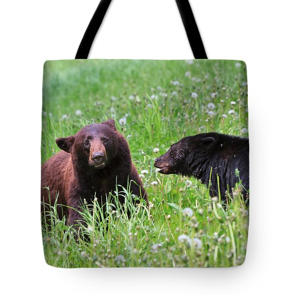 American Black Bear With Cub Tote Bag by Louise Heusinkveld