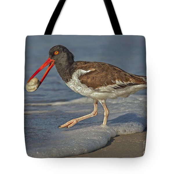 American Oystercatcher Grabs Breakfast Tote Bag by Susan Candelario