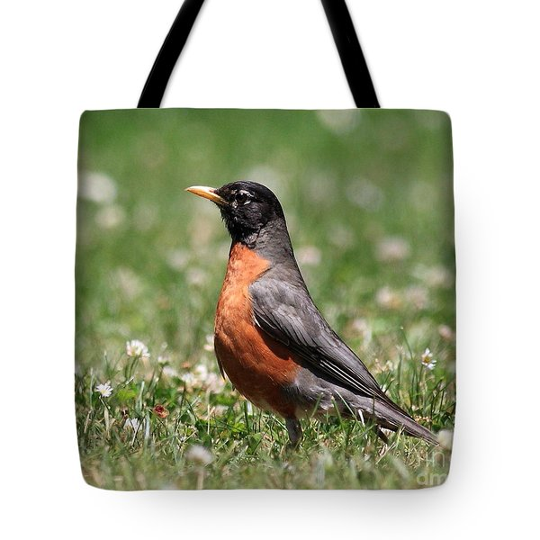 American Robin Tote Bag by Wingsdomain Art and Photography