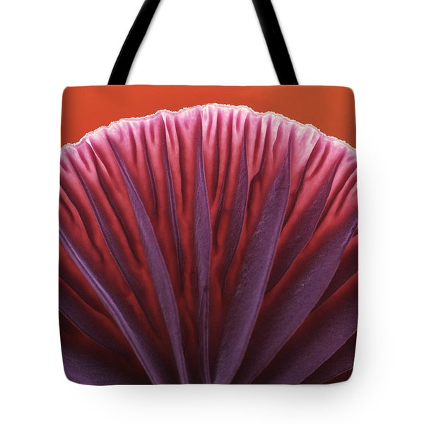 Amethyst Deceiver Laccaria Amethystea Tote Bag by Jan Vermeer