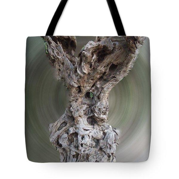 Ancient Old Olive Tree Tote Bag by Colette V Hera  Guggenheim