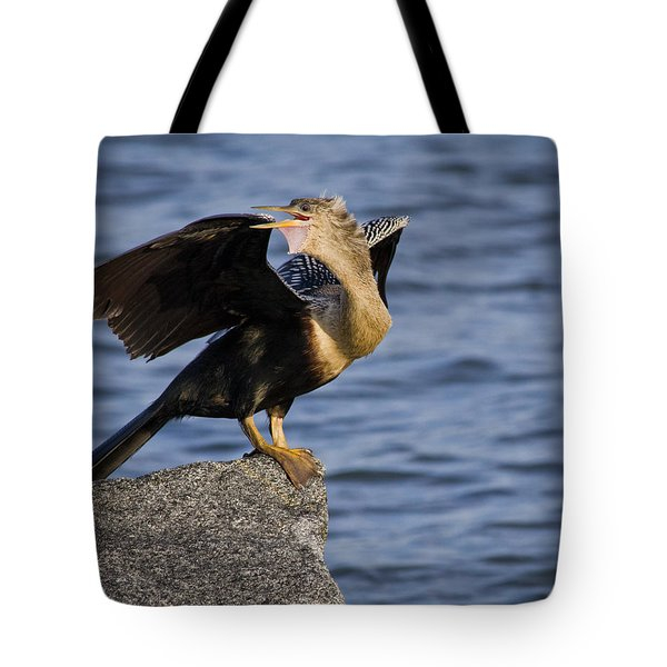 Anhinga Looking Back Tote Bag by Roger Wedegis