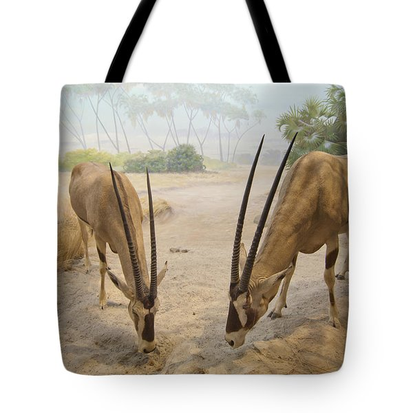 Antelope In The Sand With Their Heads Tote Bag by Laura Ciapponi