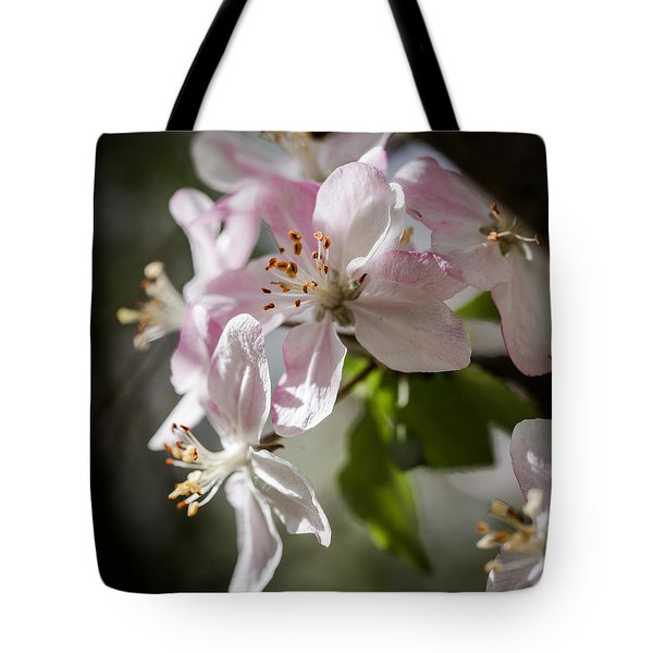 Apple Blossom Tote Bag by Ralf Kaiser