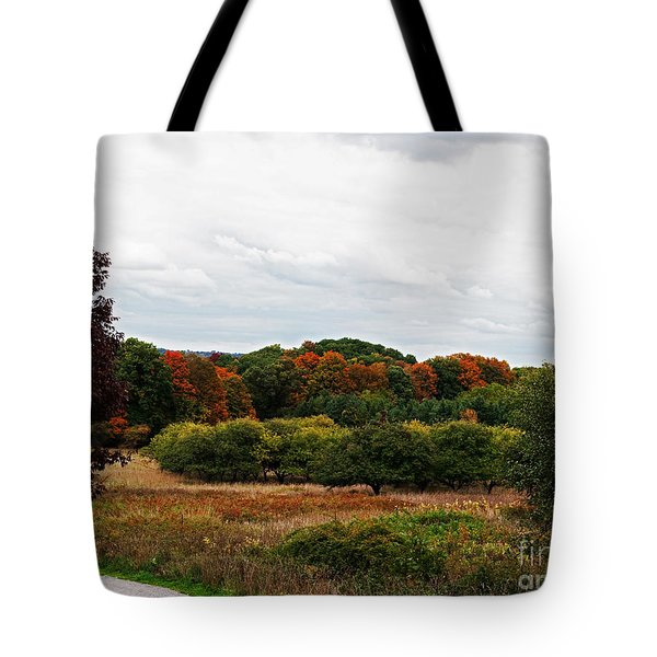 Apple Orchard Gone Wild Tote Bag by Barbara McMahon
