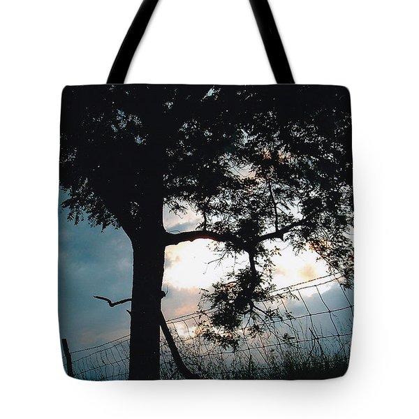 Approaching Storm Tote Bag by Barbara Plattenburg