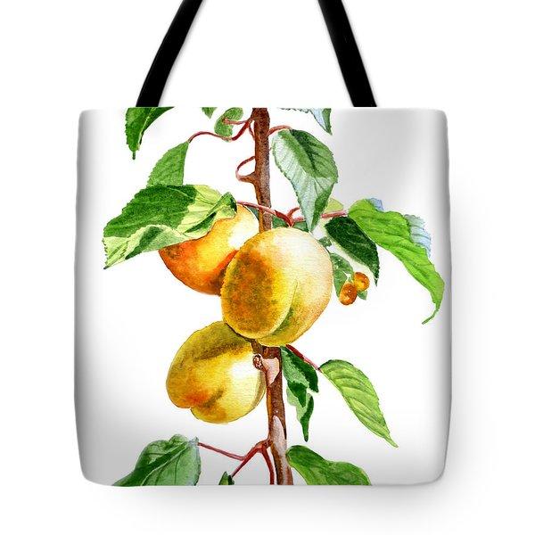 Apricots Tote Bag by Irina Sztukowski