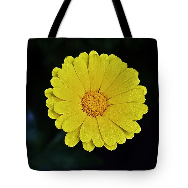 Artwork Of The Nature For A Moment Tote Bag by Axko Color de paraiso