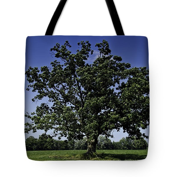 As Above As Below Tote Bag by LeeAnn McLaneGoetz McLaneGoetzStudioLLCcom