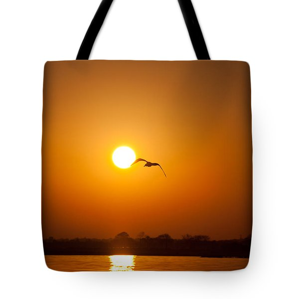 As The Gull Glides Tote Bag by Karol Livote