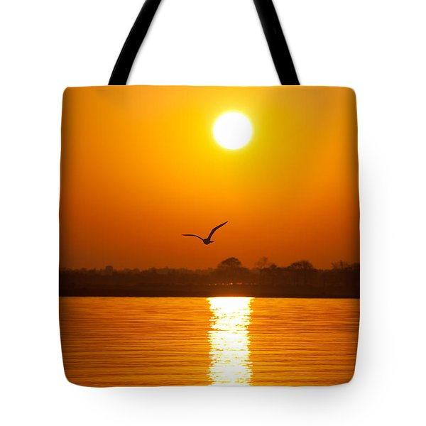 As The Seagull Heads Home Tote Bag by Karol Livote