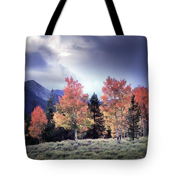 Aspens In Autumn Light Tote Bag by Leland D Howard