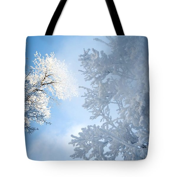 Assiniboine Park, Winnipeg, Manitoba Tote Bag by Keith Levit
