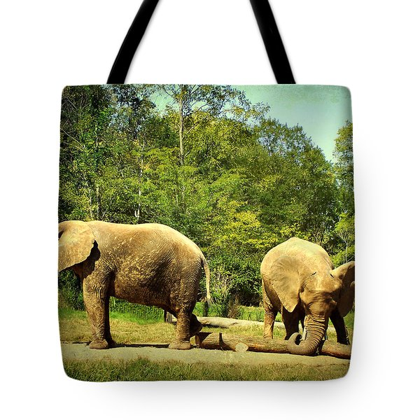 At Cross Purposes Tote Bag by Lianne Schneider