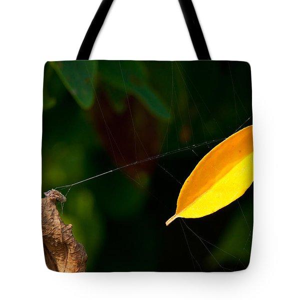 Atres 8 Tote Bag by Karol Livote