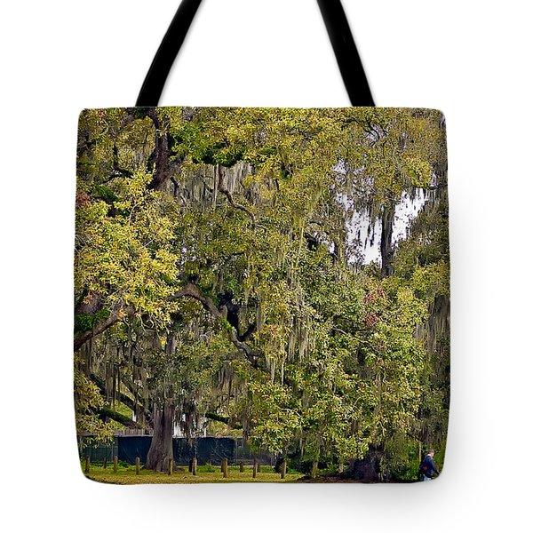 Audubon Park 2 Tote Bag by Steve Harrington